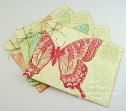 Swallowtail set